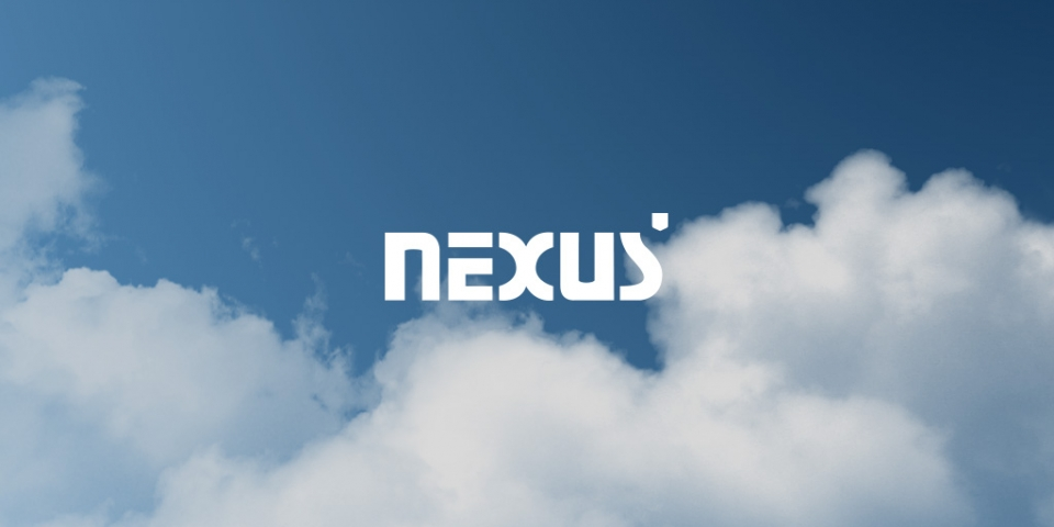 Nexus Business Group
